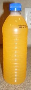 GoodBelly TOGO Mango in Water Bottle - Shaken Up