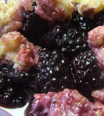 Bisquick Blackberry Cobbler Recipe