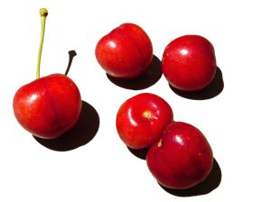 A Preview on Tart Cherry