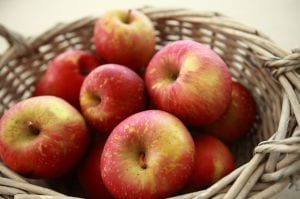 Apples and Alzheimer's Disease