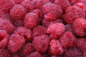 3 Top Fruits Nutritionists Love