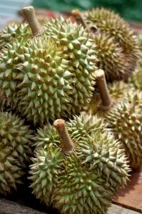 Durian for Anti-Anxiety