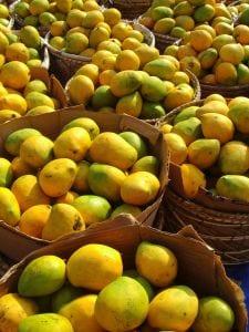 Mango, Fruit of Life