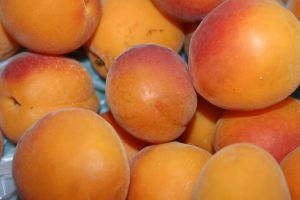 Apricots for Anemia