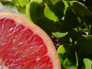 Pomelo for Weight Loss
