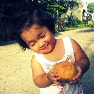 Fruit of the Philippines - Santol