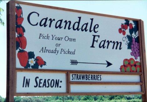 Carandale Farm