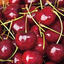 Sweetheart Cherries