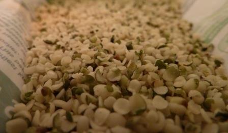Navitas Naturals Hemp Seed Review2