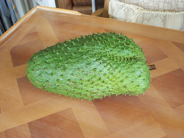 Gaviola fruit