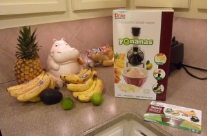 Yonanas Healthy Dessert Maker Review - Yonanas Frozen Treat Maker - Antioxidant-fruits