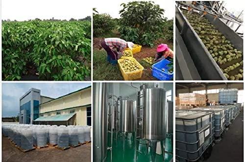 Noni Berry Juice the making process