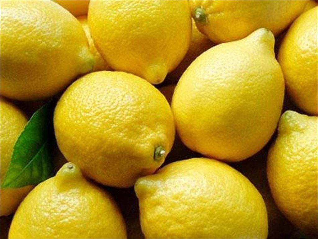 Limoncello Lemons Organic