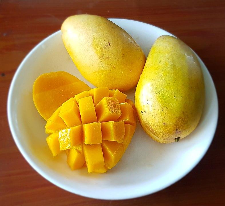 Ripe carabao mangoes Philippines