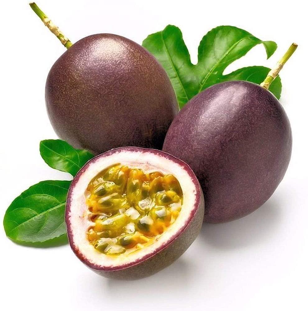Passion Purple Passiflora Edulis Fruit Plant Seeds inside seeds 2