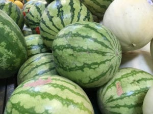 Watermelons_2