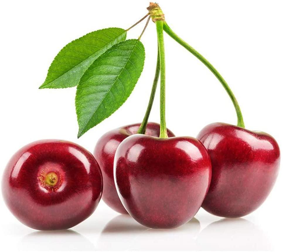Cherry Tree Seeds Sweet Cherry Seeds Shrub Prunus Cerasus Cherry-Tree Edible Fruit Seeds Black Cherry 4