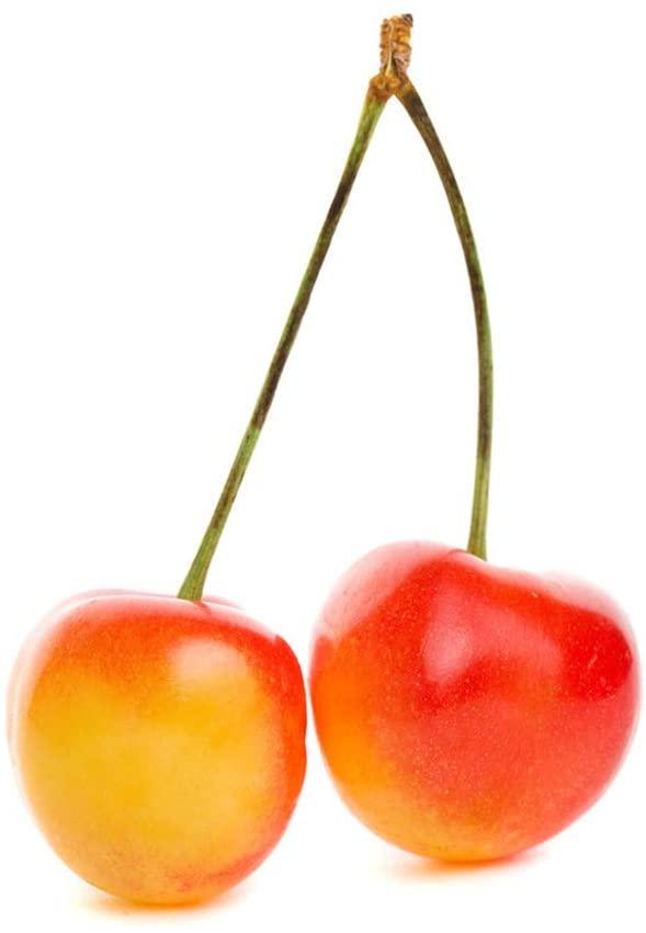 Rainier Cherry Tree Seeds