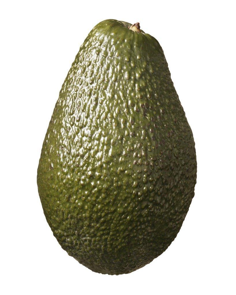 Avocado Hass Large Organic