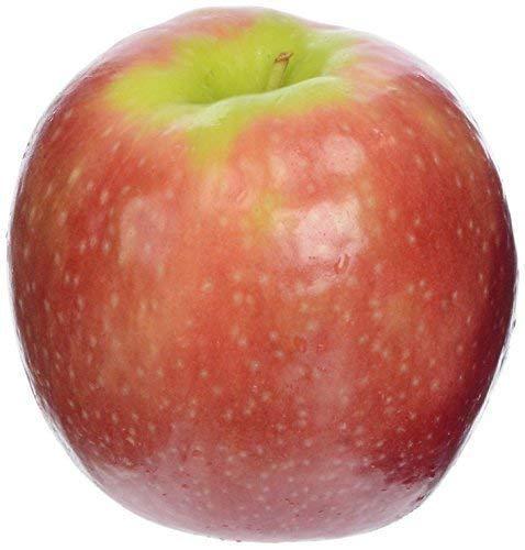 Viva Tierra Apple Pink Cripps