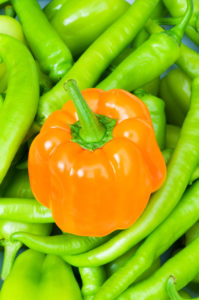 Orange bell pepper and peppers in background