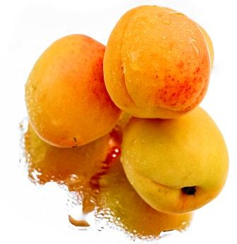 Apricots by Matthijs Rouw